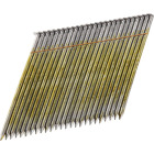 Bostitch 28 Degree Wire Weld Coated Offset Round Head Framing Stick Nail, 3-1/2 In. x .131 In. (2000 Ct.) Image 1